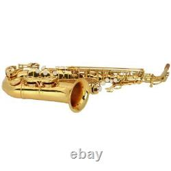 New Professional Band Eb Alto Sax Saxophone Paint Gold with Case & Accessories